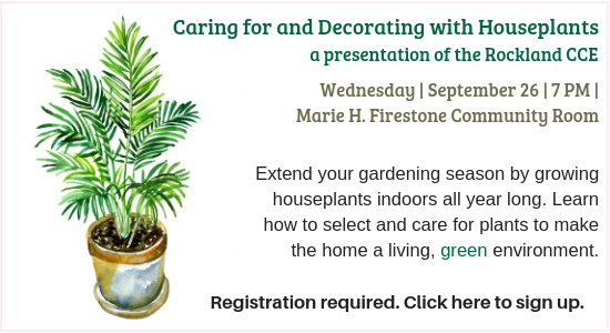 Caring for and Decorating with Houseplants Program